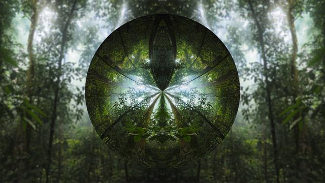 дерево-1827317_640
